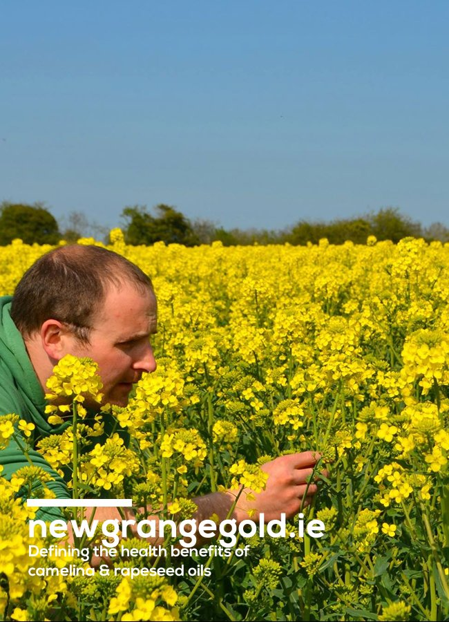 Jack Rogers in his field of yellow rape