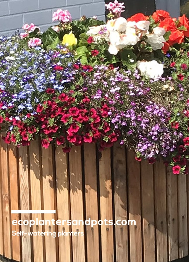 Eco Planters & Pots -  one of websites created by Format.ie